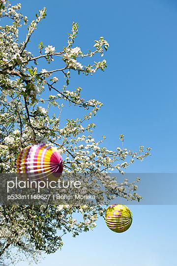 Frühlingsfest im Sonnenschein - p533m1169627 von Böhm Monika