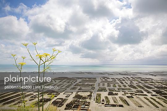 Blick über Austernbänke - p606m1145890 von Iris Friedrich