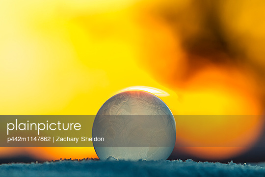 p442m1147862 von Zachary Sheldon