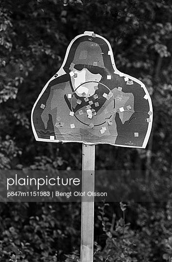 p847m1151983 von Bengt Olof Olsson