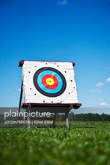 Archery target on meadow