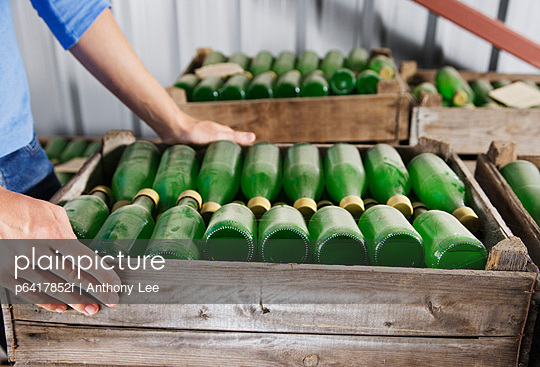 Crate of green bottles