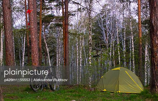 p429m1155553 von Aleksander Rubtsov