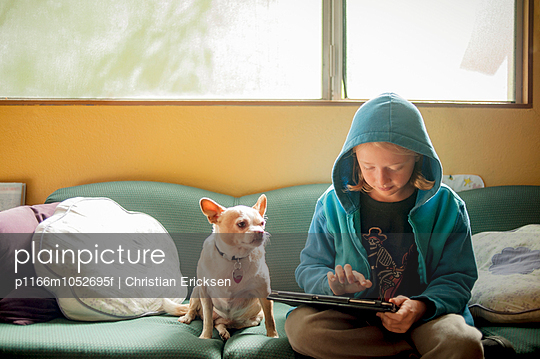 Boy using tablet computer while sitting with Chihuahua on sofa at home