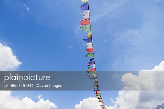 p1166m1151443 von Cavan Images