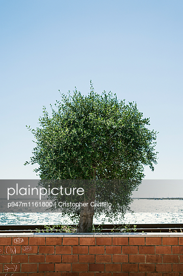 Algarve - p947m1161800 von Cristopher Civitillo