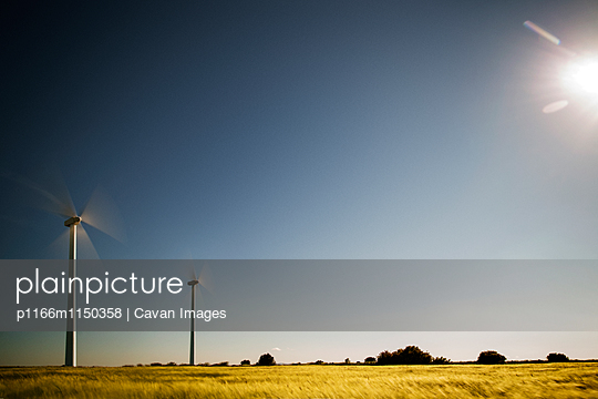 p1166m1150358 von Cavan Images