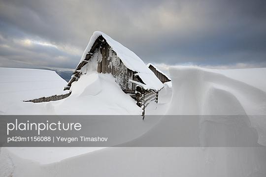 p429m1156088 von Yevgen Timashov