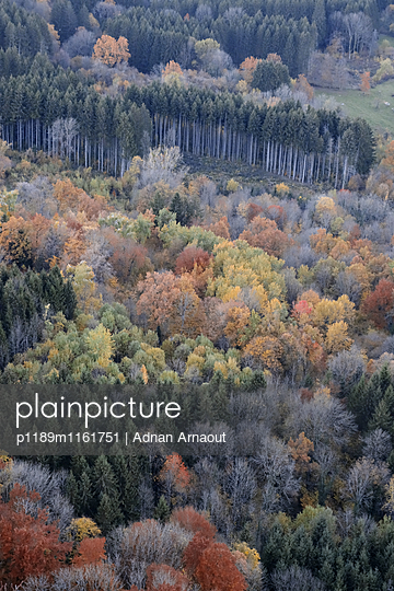 Franche-Comté, Doubs - p1189m1161751 von Adnan Arnaout