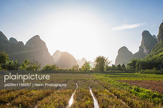 p429m1156057 von Henn Photography