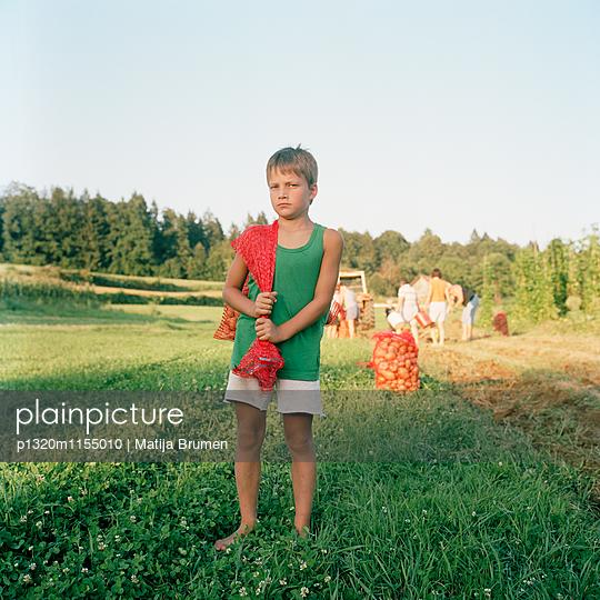Junge auf dem Feld - p1320m1155010 von Matija Brumen
