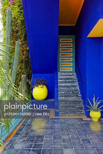 Jardin Majorelle - p1310m1162082 von Uwe Ditz