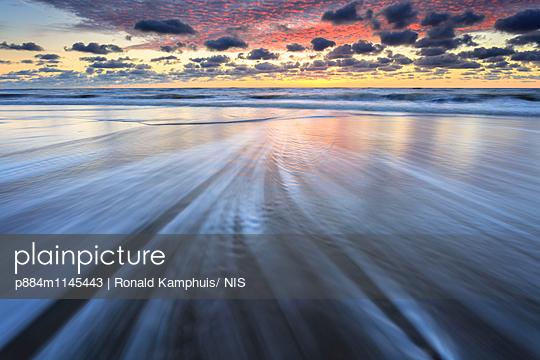 p884m1145443 von Ronald Kamphuis/ NIS