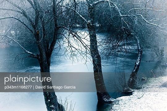 p343m1168277 von David Santiago Garcia