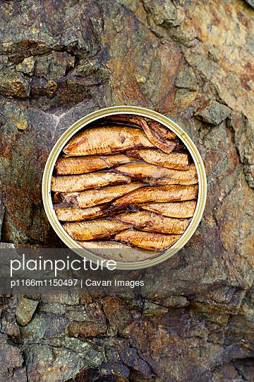 p1166m1150497 von Cavan Images