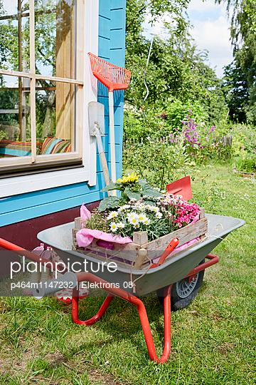 Gartenzeit - p464m1147232 von Elektrons 08