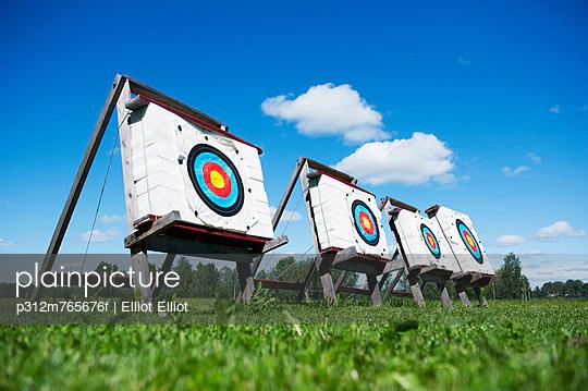 Archery targets on meadow