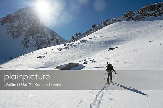 p343m1168417 von Kennan Harvey