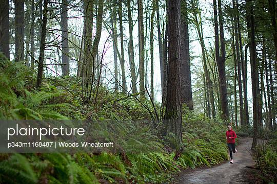 p343m1168487 von Woods Wheatcroft