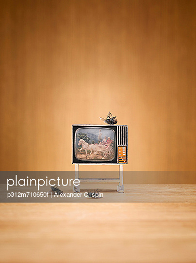 Miniature television and dead flies
