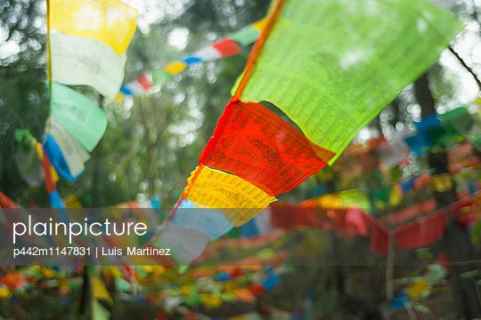 p442m1147831 von Luis Martinez
