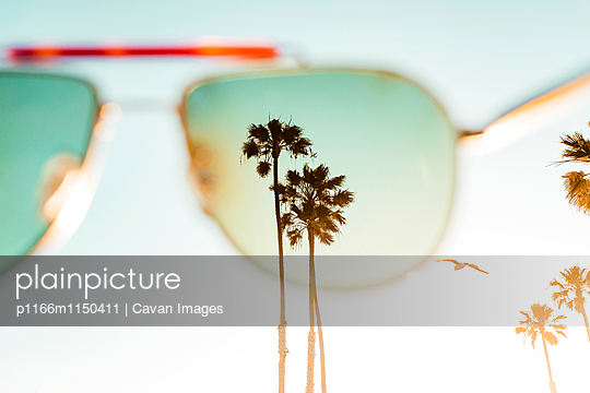 Palm trees seen through sunglasses against clear sky
