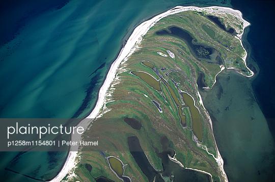 Halbinsel Graswarder; Heiligenhafen - p1258m1154801 von Peter Hamel
