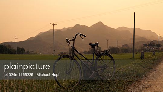 Abgestelltes Fahrrad neben einem Reisfeld - p1324m1165225 von michaelhopf