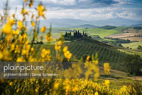 Landschaft bei San Quirico d`Orcia, Val d`Orcia, Provinz Siena, Toskana, Italien, UNESCO Welterbe - p1316m1161051 von Daniel Schoenen