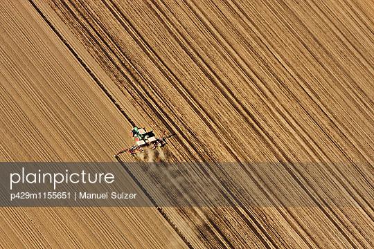 p429m1155651 von Manuel Sulzer