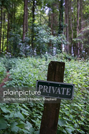 Privat - p1057m1146281 von Stephen Shepherd