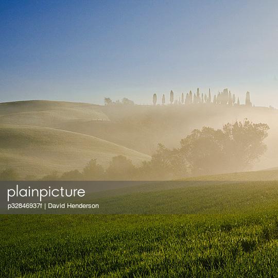 Rural scene at sunrise