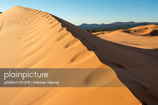 p343m1151076 von Kennan Harvey