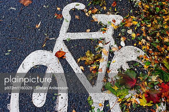 Fahrradweg mit Herbstlaub - p972m1160329 von Stefan Andersson