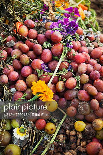 Pile of compost with rotten plums and flowers on top