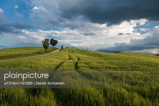 Landschaft bei Pienza, Val d`Orcia, Provinz Siena, Toskana, Italien, UNESCO Welterbe - p1316m1161059 von Daniel Schoenen