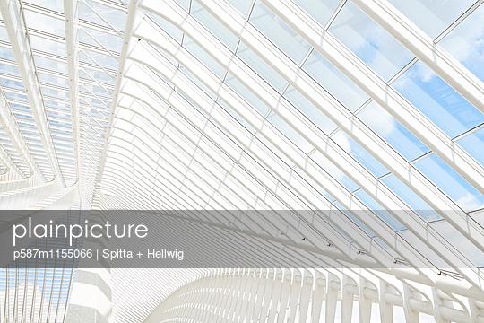 Bahnhof Liège-Guillemins in Lüttich, Dachkonstruktion - p587m1155066 von Spitta + Hellwig