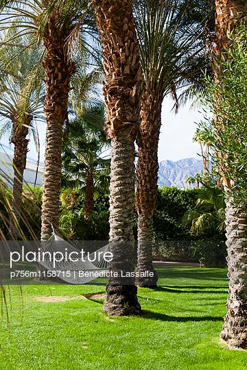 Palm Springs - p756m1158715 von Bénédicte Lassalle