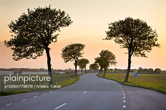 Curvy country road along trees and landscape at dusk