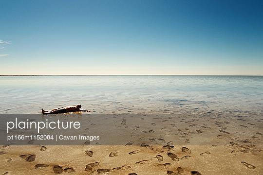 p1166m1152084 von Cavan Images
