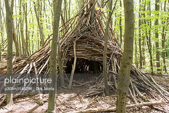 Hütte im Wald - p305m1146296 von Dirk Morla