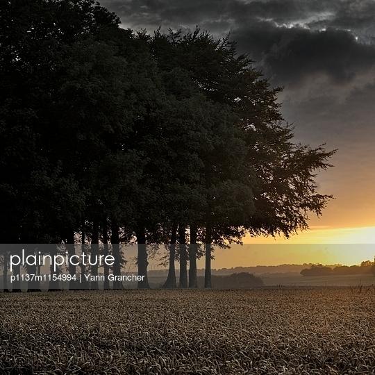 Sonnenaufgang auf dem Land - p1137m1154994 von Yann Grancher