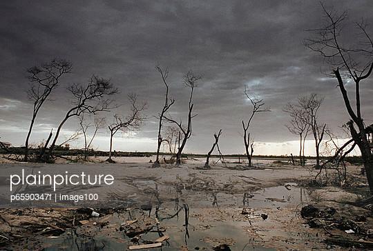 destroyed rural landscape after storm stock images page everypixel