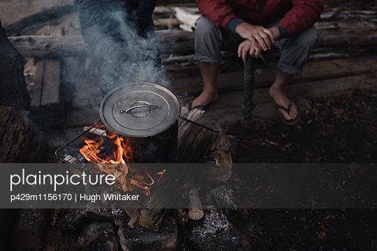 p429m1156170 von Hugh Whitaker