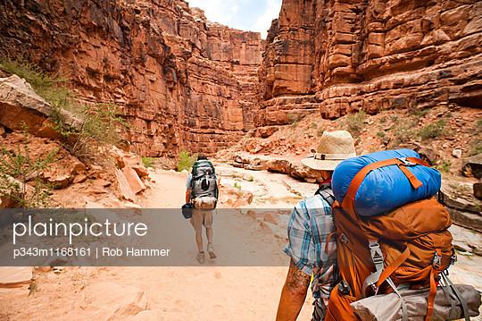 p343m1168161 von Rob Hammer