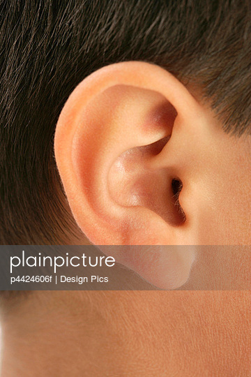 Close-up of an ear