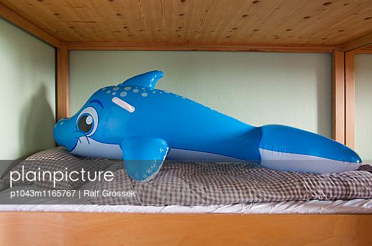 Delphin - p1043m1165767 von Ralf Grossek