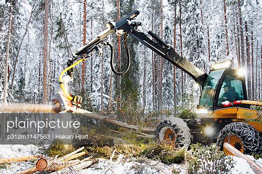 p312m1147563 von Hakan Hjort