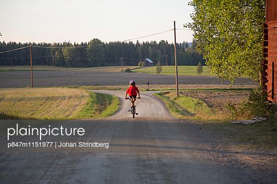 p847m1151977 von Johan Strindberg