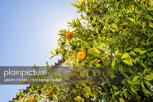 Algarve - p947m1161801 von Cristopher Civitillo